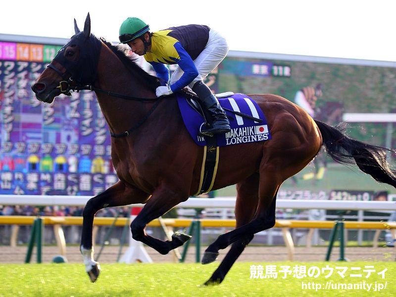 マカヒキ - 競走馬データTOP|11月29日ジャパンカップ G1【9着】|競馬 ...
