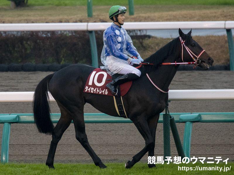 タイセイトレイル - 競走馬データTOP 4月11日大阪―ハンブルクC 【11 ...