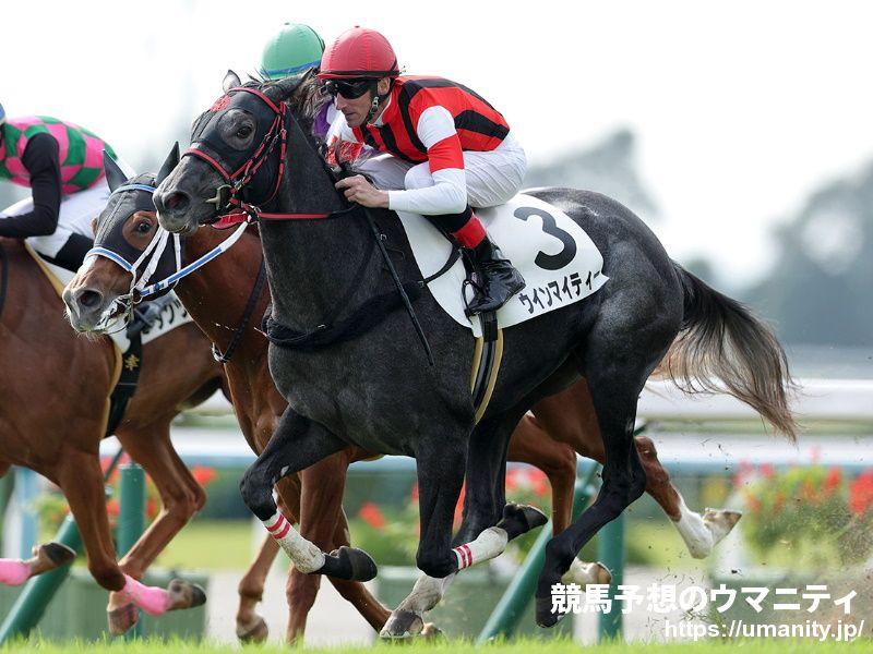 ウインマイティー - 競走馬データTOP 1月16日愛知杯 G3【14着】 競馬 ...