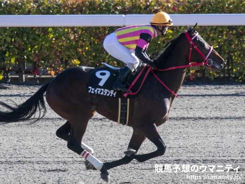 フェイマスダンディ - 競走馬データTOP 11月28日カトレアステークス ...