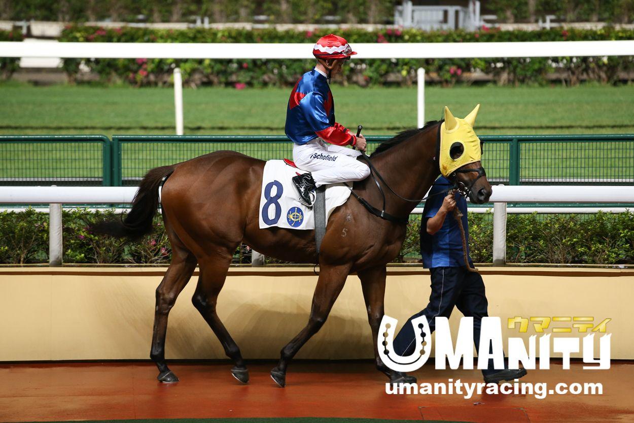 ハッピータンゴ(競走馬)- 成績|香港競馬|競馬予想のウマニティ!香港競馬β版ハッピータンゴ(競走馬)