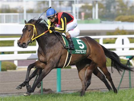 テイエムオーシャン1998年産 - 競走馬データTOP|競馬予想のウマニティ!