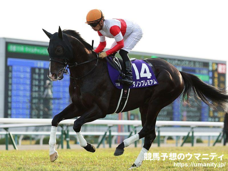 香港国際競走に出走する日本馬3頭が到着  競馬ニュース 競馬予想のウマニティ!